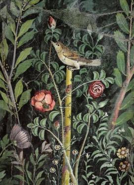 nightingale-and-rose