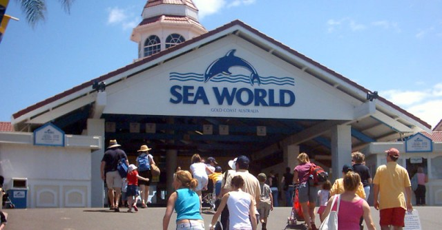 Sea_world_australia