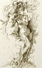 Dryad, by Severine Pineaux